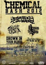 chemical bash saw 2012